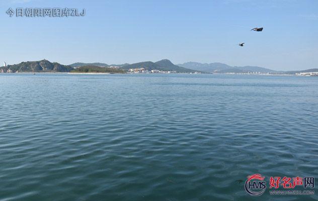 【好名声网】那里有片海(王晓晖)