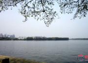 【好名声网】江河万里海湖浑——武汉东湖(陈玉民)