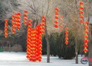 【2019·年味儿随手拍】红红火火中国年(葛丛玫)