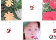 【好名声网】七月,温暖的时光(刘莉)