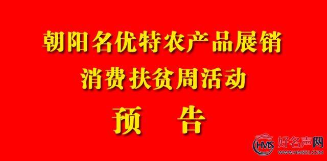 辽宁朝阳名优特农产品展销、消费扶贫周活动预告